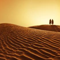 bedouins in desert
